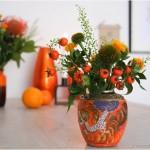 manchmal, da bleiben die wunder aus… #flowersforinga