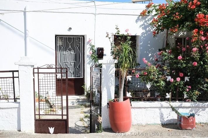 Pflanzeninspiration aus Rhodos
