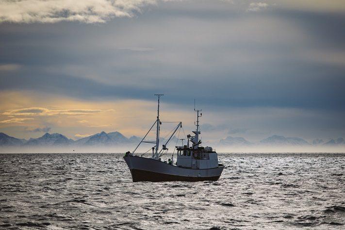 als travelbloggerin zum skrei angeln auf den lofoten
