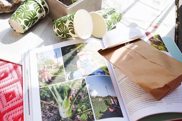 pflanzen aussäen großstadtbalkon, lust auf laube